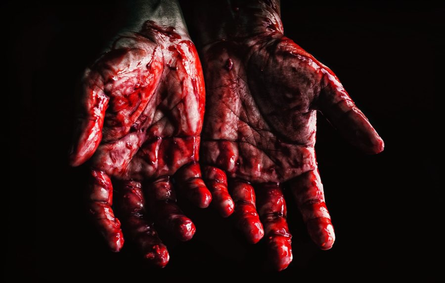 person-s-hands-covered-with-blood-673862