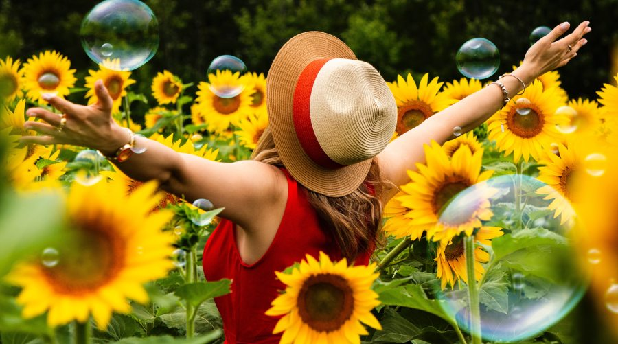 woman-wearing-straw-hat-standing-in-bed-of-sunflowers-1263985